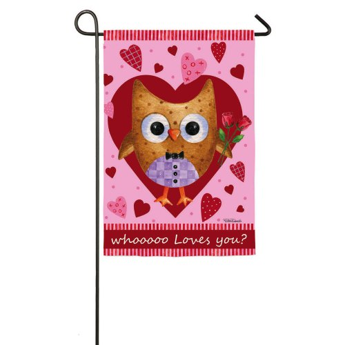 Who Loves You Valentines Day Owl Garden Flag