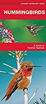 Hummingbirds: A Folding Pocket Guide to Familiar Species (A Pocket Naturalist Guide)