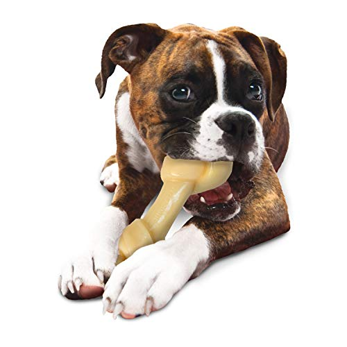 Nylabone Power Chew Extreme Chewing Big Chew Durable Toy Bone for Large Breeds, Knot Bone