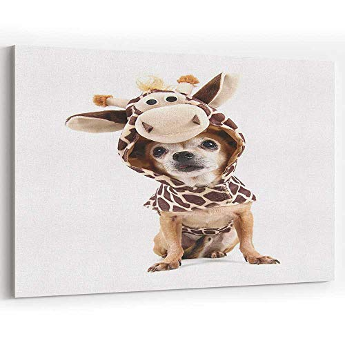(Cute Chihuahua in a Costume Canvas Prints Wall Art for Home Decor Stretched-Framed Ready to)