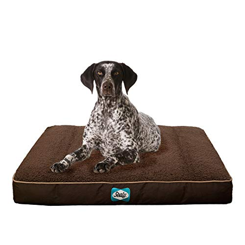 Sealy Cushy Comfy Pet Dog Bed | Memory and Orthopedic foam with Cooling Energy Gel Dog Pet Bed with machine washable Sherpa top and water resistant inner liner, Large Brown