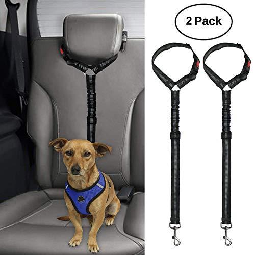 safety belt dog - 6