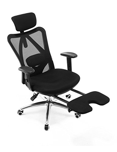 Sihoo Ergonomics Office Chair Recliner Chair,Computer Chair Desk Chair, Adjustable Headrests Chair Backrest and Armrest's Mesh Chair (Black)