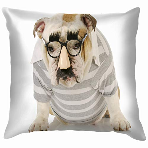 Funny Dog English Bulldog Wearing Groucho Animals Wildlife Transportation Soft Cotton Linen Cushion Cover Pillowcases Throw Pillow Decor Pillow Case Home Decor 16X16 Inch]()