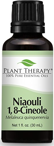 Plant Therapy Niaouli Essential Oil 30 mL  100% Pure, Undilu