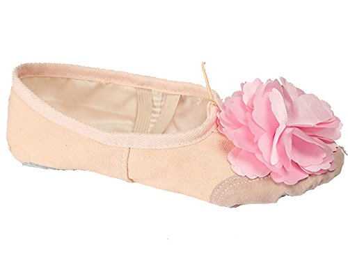 Zapatillas De Danza Del Ballet De Lona Floral Para Mujer Zapatillas De Vientre Con Suela Dividida