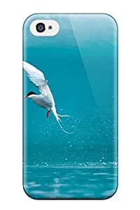 High Quality Arctic Tern Case For Iphone 4/4s / Perfect Case by lolosakes