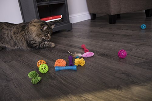 SmartyKat Smarty Stash 13 Piece Variety Pack Cat Toys
