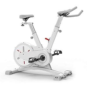 41Lph%2ByszPL. SS300 Allenamento Spin Bike Professionale Cyclette Aerobico Home Trainer, Regolazione Della Resistenza a 8 Livelli, Volano in Acciaio Inossidabile Da Competizione, Silenziamento Del Controllo Magnetico