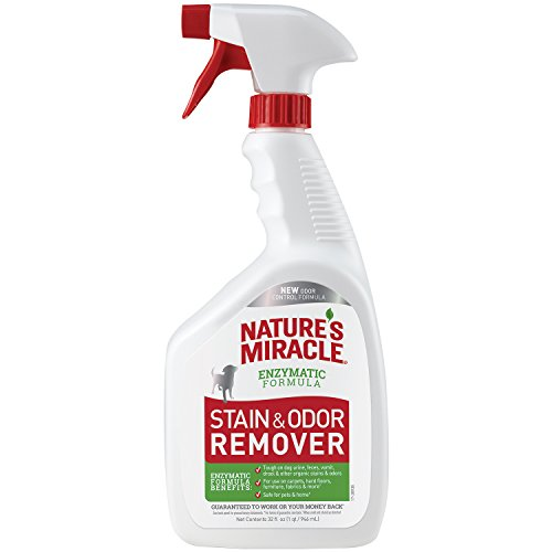 Feces Stain Removal (Nature's Miracle Dog Stain and Odor Remover Pour, 32 fl. oz.)