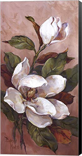 Magnolia Accents ll by Barbara Mock Canvas Art Wall Picture, Museum Wrapped with Black Sides, 12 x 24 inches