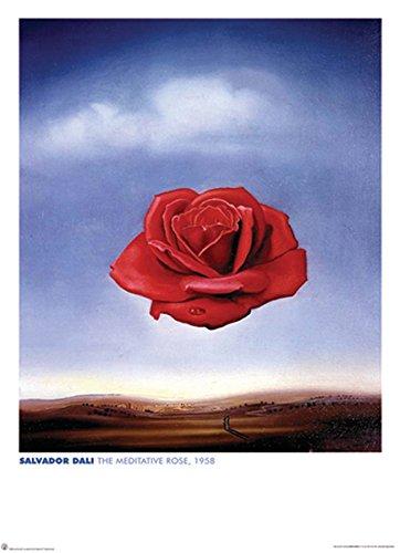 Salvador Meditative Rose Fine Surrealist Art Decorative Giant Poster Print 40 By 55 - Dali Meditative Rose