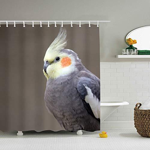 nicell11 Cockatiel Shower Curtains Bath Curtains 72 x 72 (Anpassen Oder Anpassen)