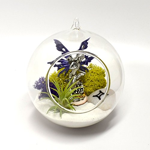 Pixie Glare Hanging Terrarium Zodiac Fairy Garden Kit DIY...