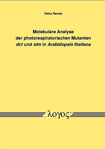 Download Molekulare Analyse der photorespiratorischen Mutanten dct und stm in Arabidopsis thaliana ebook