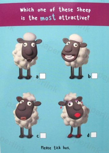 Humorous Birthday Card Plk5072 Attractive Sheep Amazon Co Uk