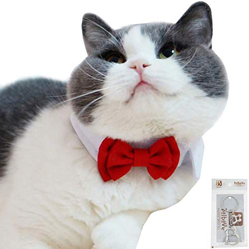 Bolbove Adjustable Formal Pet Bowtie Collar Neck Tie for Dogs & Cats (Small, Red) ()