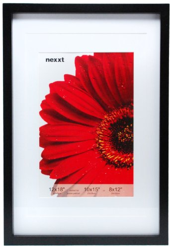 Kiera Grace Gallery Wood Picture Frame, 12 by 18-Inch Double Matted for 10 by 15-Inch or 8 by 12-Inch photo, Black - 12x15 Framed