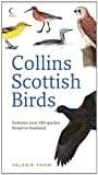Collins Scottish Birds, Valerie Thom, 0007270682