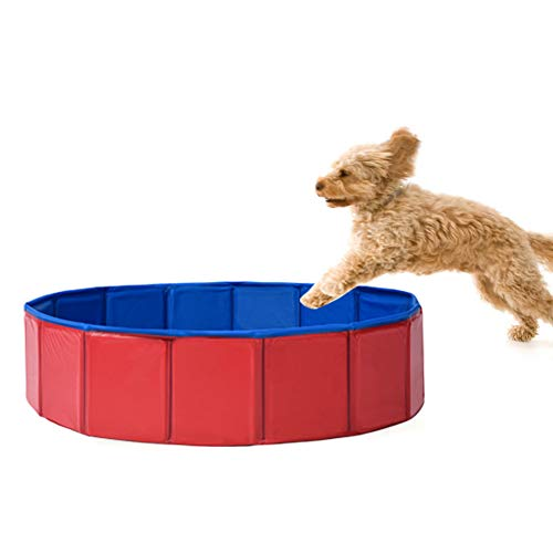 Foldable Dog Pet Bath Pool Pet swimming Tub Collapsible Dog Pet Tub for Dogs,Cats or kids (32inch.D x 8inch.H,blue-red) by fastUU