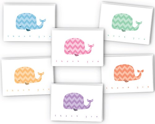 Chevron Colorful Whales Baby Thank You Cards - 48 Cards & Envelopes (Valley Hills)