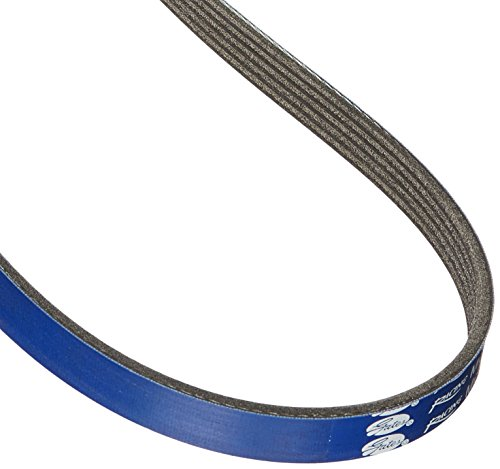 Gates K050420RB Blue Racing Micro-V Belt ()
