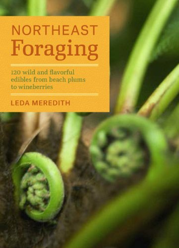 Northeast Foraging: 120 Wild and Flavorful Edibles from Beach Plums to Wineberries (Regional Foraging Series) by Leda Meredith