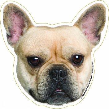 Fawn French Bulldog Magnet