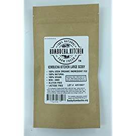 Kombucha Kitchen Genuine KOMBUCHA CULTURE (HUGE SCOBY with Strong STARTER TEA - Makes 1 Gallon) 60 100% Organic Kombucha Scoby Just like our #1 Best Seller, only larger! Over 12 square inches! Trusted Name - Fast Shipping!