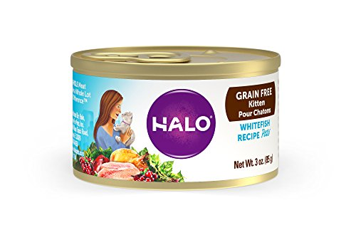 Halo Grain Free Natural Wet Cat Food, Kitten Whitefish Recipe, 3-Ounce Can (Pack Of 18)