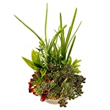 BEGONDIS Artificial Succulents Plants Plastic Fake Topiary Selected Combination With Gray Pot For Home Décor