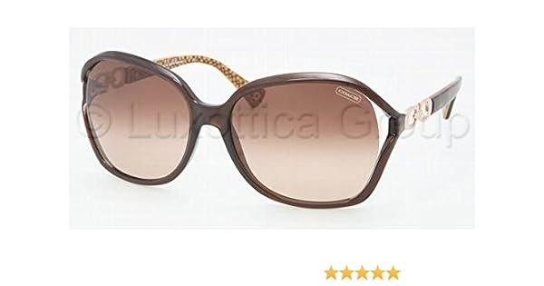 c75b35b543 Sunglasses Coach HC 8018 503513 BROWN  Amazon.ca  Sports   Outdoors