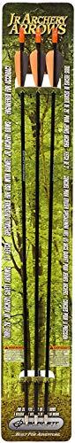 Banshee Compound Barnett Lil (Barnett Outdoors Junior Archery 28-Inch Arrows (3 Pack) (Limited Edition))