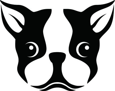 Boston Terrier Dog Face Decal Vinyl Sticker|Cars Trucks Vans Walls Laptop| BLACK |5.5 x 4.5 (Terrier Dog Car Decal)