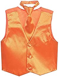 Boys SatinVest and Pretied Zipper Necktie Set USA Multiple Colors 2-16