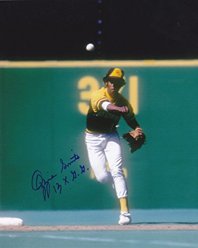 hed Picture - 13 X GOLD GLOVE 8x10 - Autographed MLB Photos ()