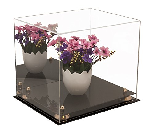 Versatile Deluxe Acrylic Display Case - Medium Rectangle Box with Gold Risers and Mirror 12.25