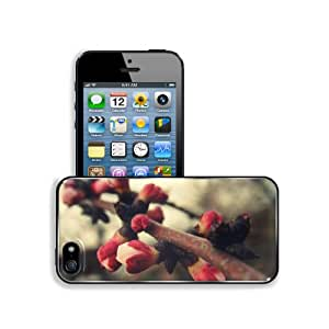 Spring Blossoms Macro Flora Branches Apple iPhone 5 / 5S Snap Cover Premium Aluminium Design Back Plate Case Customized Made to Order Support Ready 5 inch (126mm) x 2 3/8 inch (61mm) x 3/8 inch (10mm) MSD iPhone_5 5S Professional Metal Case Touch Accessories Graphic Covers Designed Model Sleeve HD Template Wallpaper Photo Jacket Wifi 16gb 32gb 64gb Luxury Protector Wireless Cellphone Cell Phone