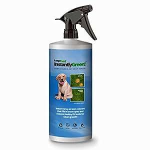 LeapFrog Lawns - 32oz Instant Lawn Colorant & Pet Spot Repair
