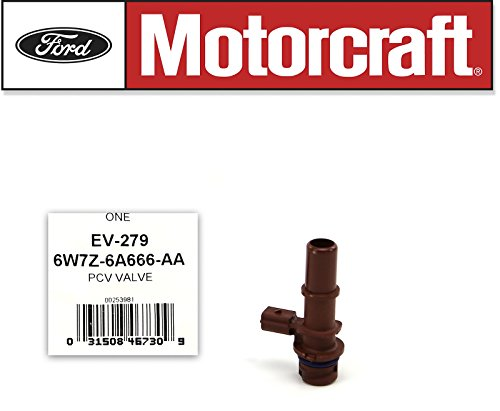 Ford 6W7Z-6A666-AA Valve Assembly ()
