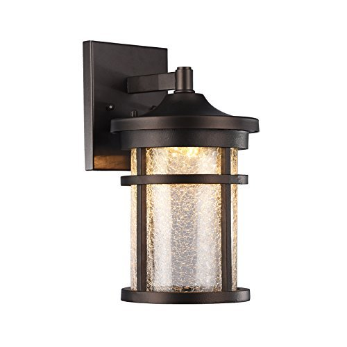 Chloe Lighting Frontier Transitional Led Rubbed