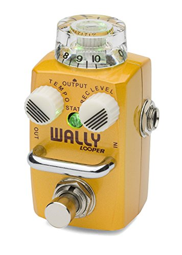 Hotone Skyline Series WALLY Compact Looper Guitar Pedal by Hotone