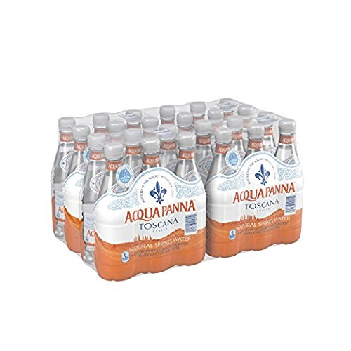 Acqua Panna Natural Spring Water VCBN, 16.9-Ounce (Pack of 48)
