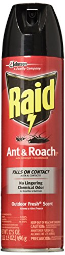 Raid Ant & Roach Killer Insecticide Spray-Outdoor Fresh - 17.5 oz by Raid (Image #2)