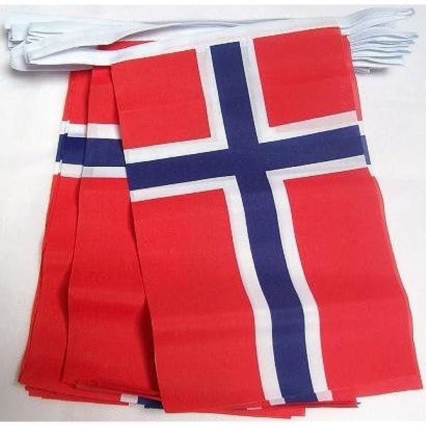 AZ FLAG Guirnalda 6 Metros 20 Banderas de Noruega 21x15cm - Bandera Noruega 15 x 21 cm - BANDERINES: Amazon.es: Hogar