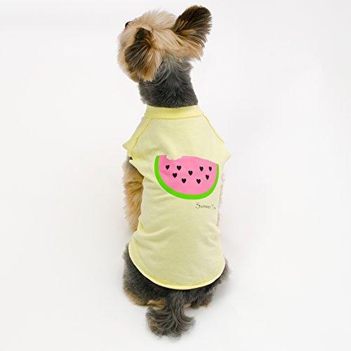Image of Stinky G Pet Stretch Cotton T Shirt New Print 2017 (#10, Watermelon)