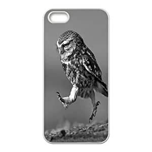 JenneySt Phone CaseCute Owl Pattern For Apple Iphone 5 5S Cases -CASE-4