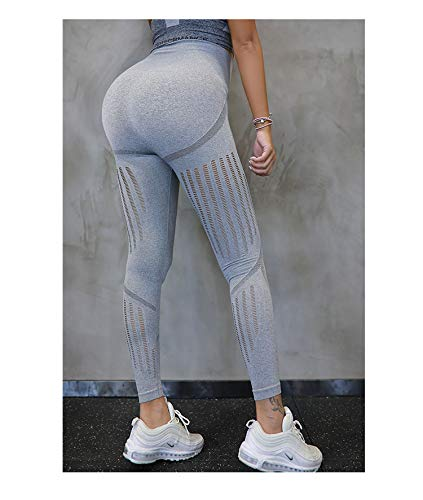 Seamless Workout Leggings Squat Proof Ombre Fitness Excise Gym High Waist Yoga Pants Women (Ripped Grey, L)