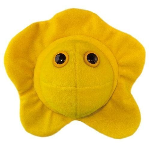 Amazon.com: Giant Microbes Herpes (Herpes Simplex Virus 2) by GIANTmicrobes, Inc.: Toys & Games