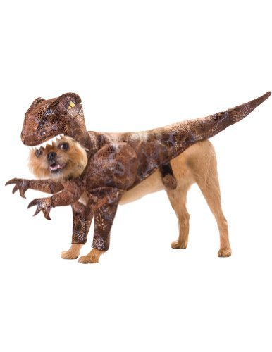 Scary Dog Costumes - Raptor Pet Animal Planet Costume Medium